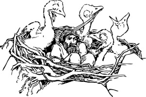 man_in_a_bird_s_nest